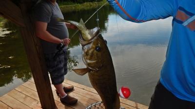 doublefish1.jpg
