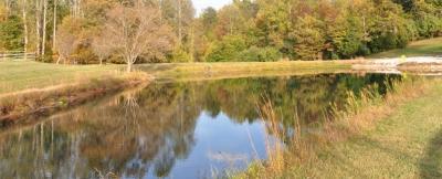View_of_pond_looking_toward_dam.jpg