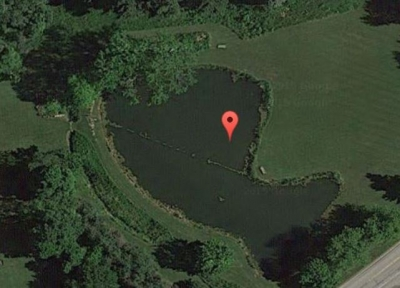 Snip of Pond.JPG