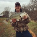 Large Bass in Small Pond