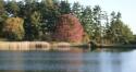 2 acre pond