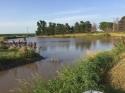 My Pond