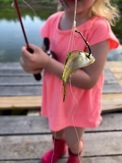 elayna fish.jpg