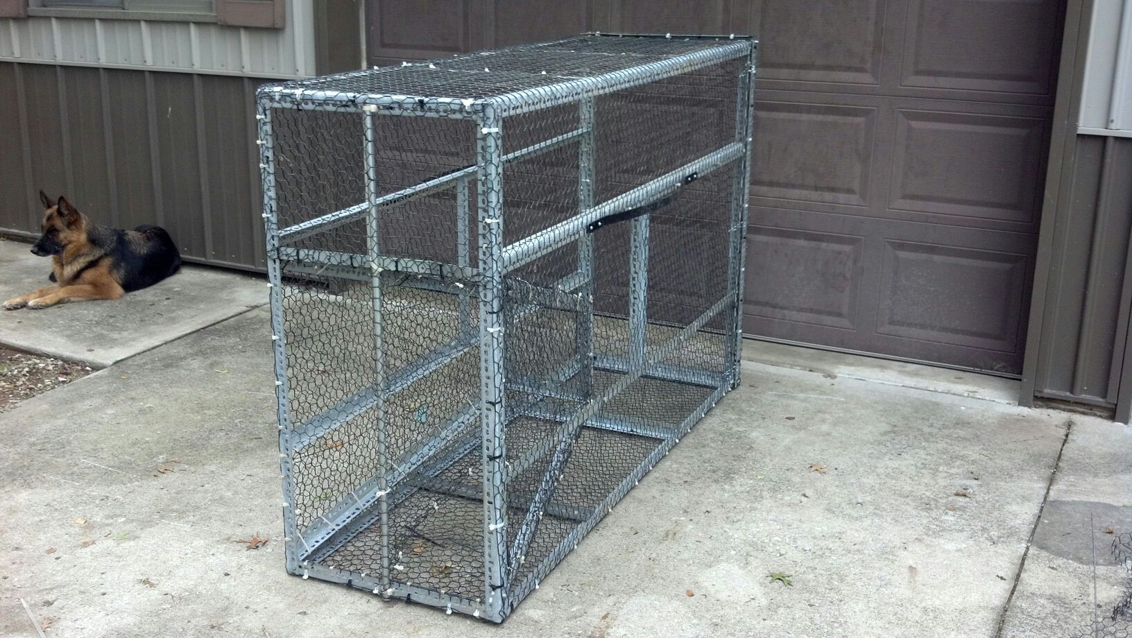 Bluegill traps bing images for Diy fish trap