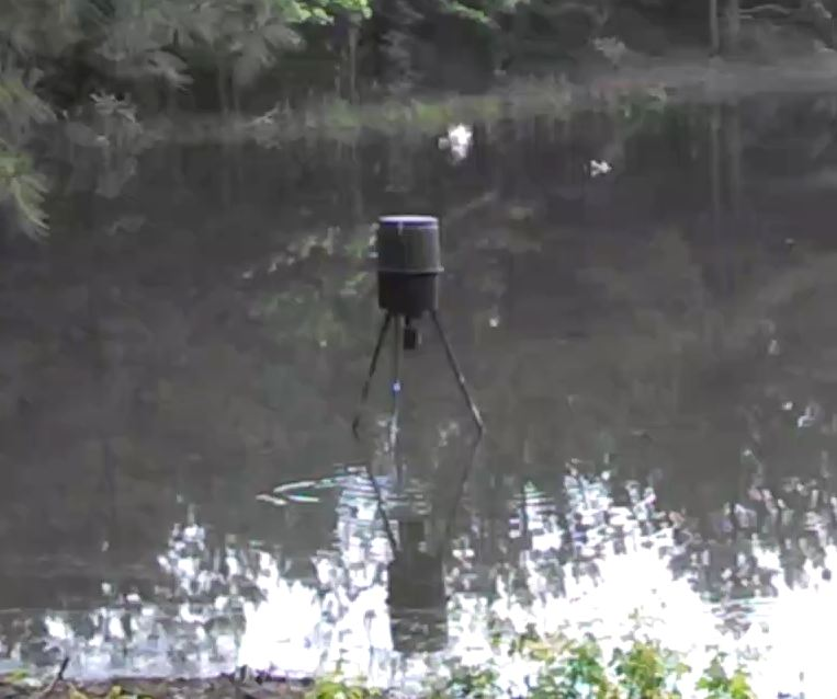 automatic feeders diyprojects fish for feeder an project diy own ponds diagram building build your to automated