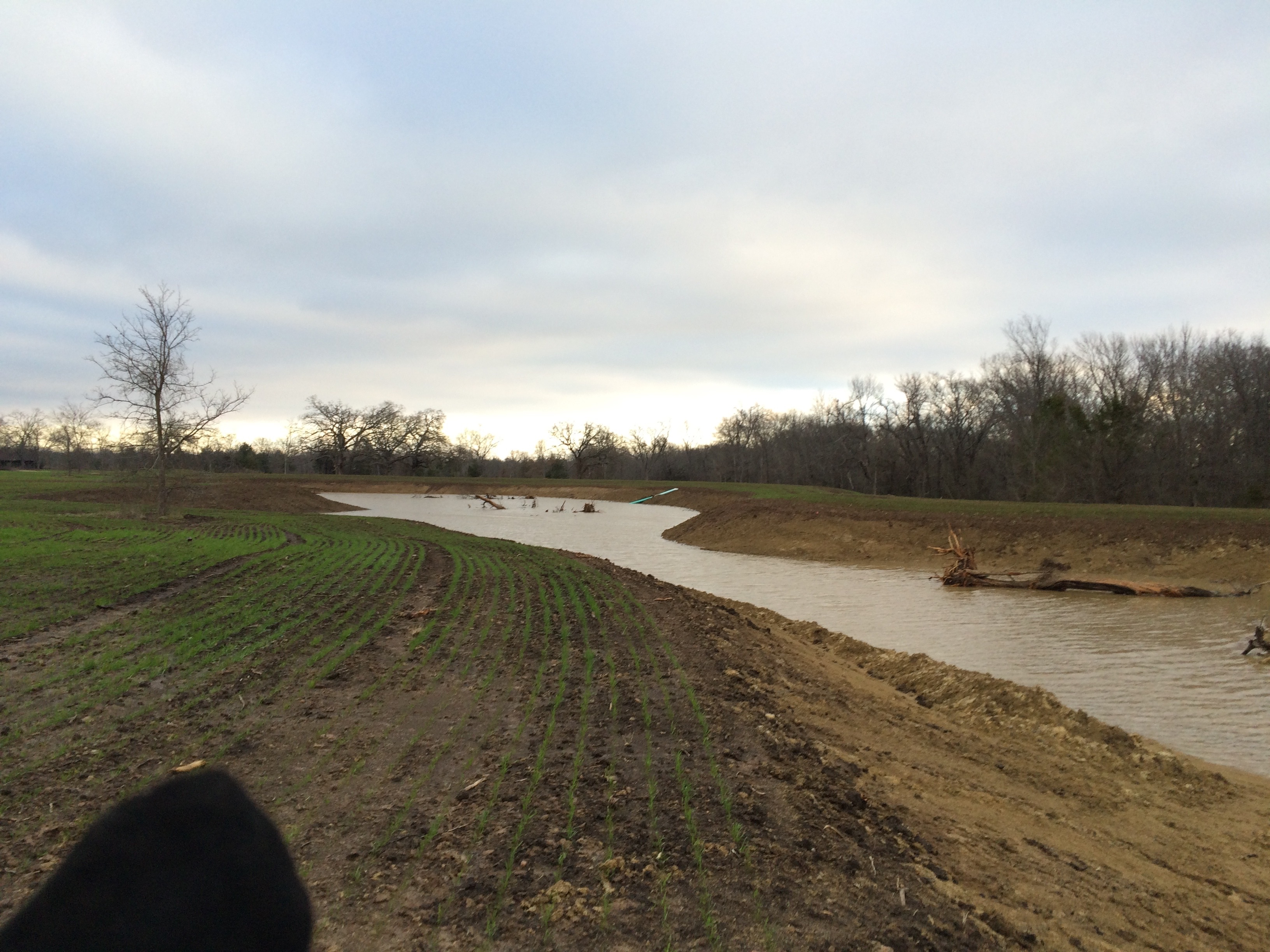 New pond near sulphur springs corrective stocking pond for Stocked fishing ponds near me